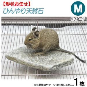 ひんやり天然石 M 形状おまかせ デグー モモンガ 保冷用品 関東当日便|chanet