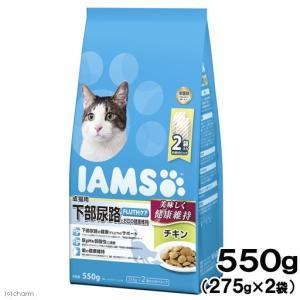 アイムス 成猫用 下部尿路とお口の健康維持 チキン 550g キャットフード 正規品 IAMS 関東当日便