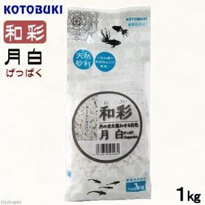 コトブキ工芸 kotobuki 和彩 月白 1kg 金魚 メダカ 砂利|チャーム charm PayPayモール店