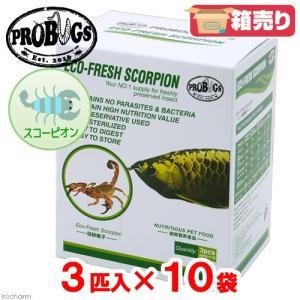 プロバグズ 真空生昆虫 スコーピオン 1箱(3匹×10袋入) PROBUGS ECO-FRESH SCORPION 関東当日便|chanet