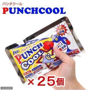アイスジャパン パンチクール25個セット    ひんやり 関東当日便|chanet