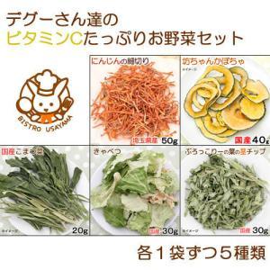 デグーさん達のビタミンCたっぷりお野菜セット 人気野菜5種アソート 国産おやつ chanet
