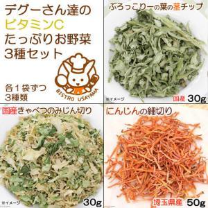 デグーさん達のビタミンCたっぷりお野菜セット 人気野菜3種アソート 国産おやつ chanet