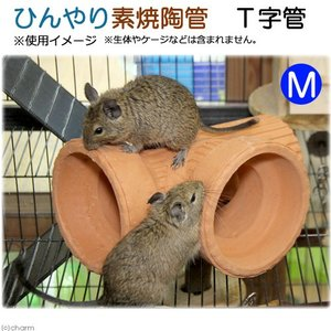 ひんやり素焼陶管 T字管 M 小動物用 ハウス トンネル 関東当日便|chanet