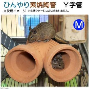 ひんやり素焼陶管 Y字管 M 小動物用 ハウス トンネル 関東当日便|chanet
