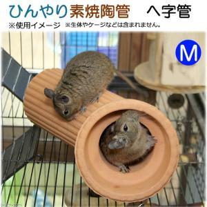 ひんやり素焼陶管 へ字管 M 小動物用 ハウス トンネル 関東当日便|chanet