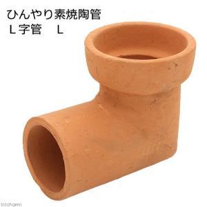 ひんやり素焼陶管 L字管 L 小動物用 ハウス トンネル 関東当日便|chanet