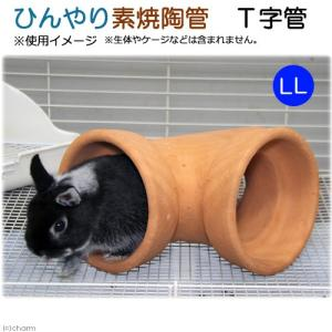 ひんやり素焼陶管 T字管 LL 小動物用 ハウス トンネル 関東当日便|chanet