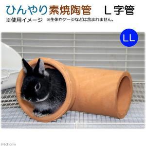 ひんやり素焼陶管 L字管 LL 小動物用 ハウス トンネル 関東当日便|chanet