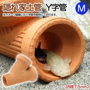 隠れ家土管 Y字管 M 内径75mm 大型 シェルター 水槽用オブジェ アクアリウム用品