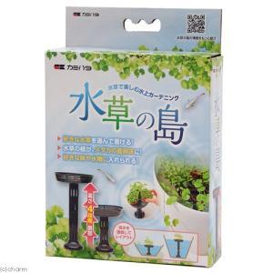メーカー:カミハタ メーカー品番: muryotassei_700_799 _aqua 水草 めだか...