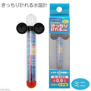 エヴァリス きっちり計れる水温計 ミニ 関東当日便 chanet