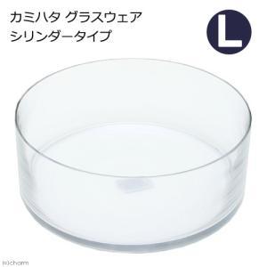 カミハタ グラスウェア シリンダータイプ L 関東当日便|chanet