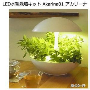 LED水耕栽培キット Akarina01 アカリーナ 関東当日便