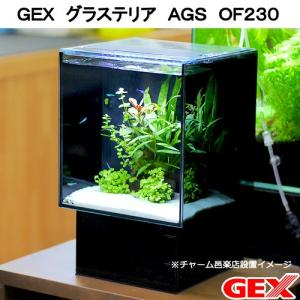 GEX グラステリア AGS OF230 お一人様5点限り 沖縄別途送料 関東当日便