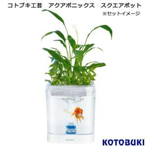 メーカー:コトブキ 品番:61510101 ▼▲ 植物と観賞魚を1つの水槽で飼育できる! コトブキ工...