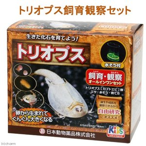 日本動物薬品 ニチドウ トリオプス飼育観察セット カブトエビ 関東当日便|chanet