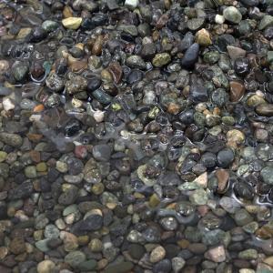 メーカー:シンセー 天然砂だから自然に優しい! 大磯砂 中目 20kg 特長 ●観賞魚用の砂利として...