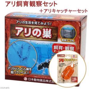 日本動物薬品 ニチドウ アリ飼育観察セット + アリキャッチャー セット 関東当日便|chanet