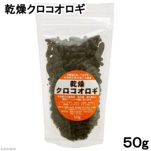 乾燥クロコオロギ 50g 爬虫類 餌 エサ フタホシ コオロギ 関東当日便