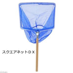 スクエアネットDX 関東当日便|chanet