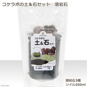 メーカー:カミハタ メーカー品番: _gardening 金魚・メダカ kjKPkin muryot...