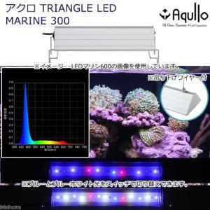 アクロ TRIANGLE LED MARINE 300 20000K Aqullo Series 関東当日便|chanet