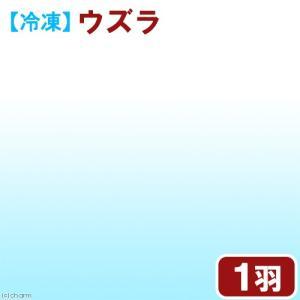 メーカー:フクロウカフェ メーカー品番: muryotassei_200_299 _animal 冷...