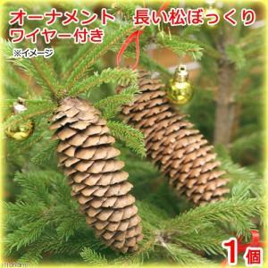 オーナメント 長い松ぼっくり ワイヤー付き 1個 クリスマス 関東当日便|chanet
