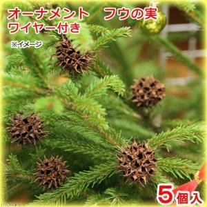 オーナメント ふうの実 ワイヤー付き 5個 クリスマス 関東当日便|chanet