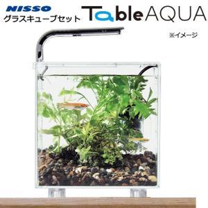 ニッソー テーブルアクア グラスキューブセット 関東当日便|chanet