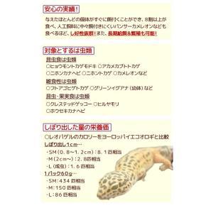 キョーリン レオパゲル 60g 関東当日便の詳細画像2
