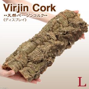 天然バージンコルクディスプレイ Lサイズ(35〜50cm前後) 約200g 関東当日便|chanet