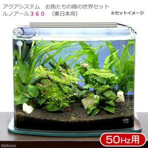 アクアシステム お魚たちの緑の世界セット ルノアール360 50Hz(東日本用) ASP方式 生体・水草付 本州・四国限定|chanet