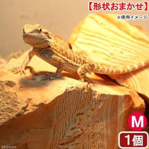 メーカー:Leaf Corp 縞模様で砂漠の岩場を再現! レッドラインストーン M 1個 対象 爬虫...
