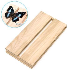 アウトレット品 志賀昆虫 36×20cm 特々大型 展翅板 昆虫 標本用品 関東当日便|chanet