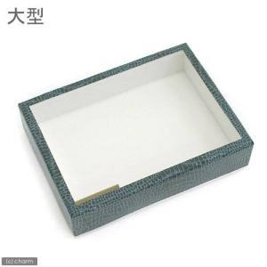 志賀昆虫 ボール紙製標本箱 大型 昆虫 標本用品 標本箱 関東当日便|chanet