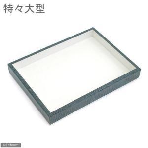 志賀昆虫 ボール紙製標本箱 (特々大型) 昆虫 標本用品 標本箱 関東当日便 chanet
