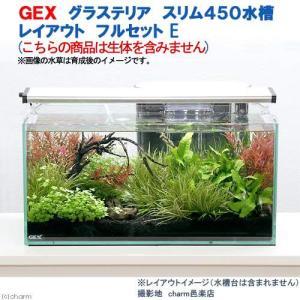 GEX グラステリア スリム450水槽 レイアウト フルセットE 本州・四国限定