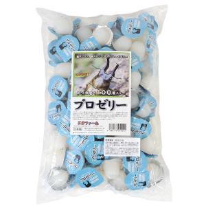 昆虫ゼリー プロゼリー(16g 100個入り) カブトムシ・クワガタ用 高タンパク!硬め仕上げ!ブリードに最適! 関東当日便|chanet