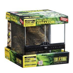 GEX エキゾテラ グラステラリウム 3030 爬虫類 飼育 ケージ ガラスケージ お一人様2点限り 関東当日便|chanet