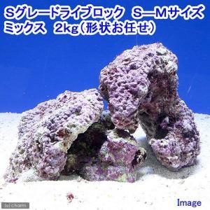 (海水魚)Sグレードライブロック S−Mサイズミックス(2kg)(形状お任せ) 北海道航空便要保温  沖縄別途送料|チャーム charm PayPayモール店