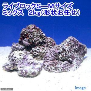 (海水魚)ライブロック S−Mサイズミックス(2kg)(形状お任せ) 北海道航空便要保温 chanet