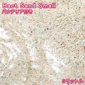 (海水魚)ばくとサンド(立上げ簡単サンド)スモール 9リットル バクテリア付き ライブサンド 北海道航空便要保温