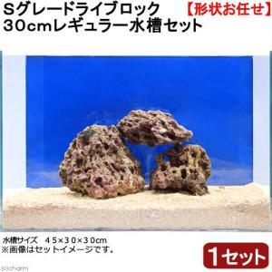 (海水魚)Sグレードライブロック 30cmキューブ水槽セット (1セット)(形状お任せ) 沖縄別途送料 北海道航空便要保温