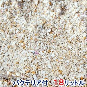 (海水魚)バクテリア付き ライブアラゴナイトサンド(約18L) 海水水槽用底砂 2個口 沖縄別途送料 北海道・九州航空便要保温|chanet