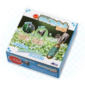 CO2フルセット スマート CO2添加 フルセット 沖縄別途送料