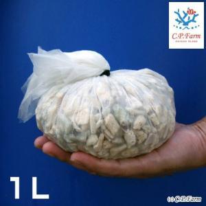 C.P.Farm直送(海水魚 ろ材)バクテリア着き熟成ろ材 LLサイズ 1リットル(0.24個口相当)別途送料|chanet