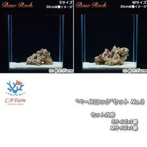 "C.P.Farm直送(海水魚)ライブロック""ベースロック""セット S・Mミックス(0.5個口相当)別途送料|chanet"