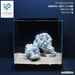 C.P.Farm直送 人工ライブロックレプリカセット NO.5(形状お任せ)(0.34個口相当)別途送料|chanet